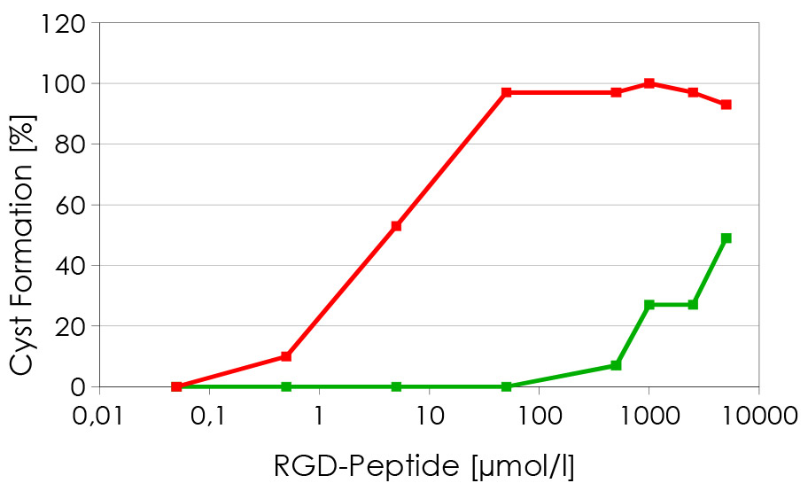 Figure 2: Cyst formation increases with increasing concentration